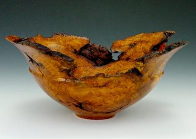Cherry Burl Bowl by Jim Fazio